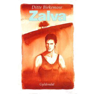 Ditte Birkemose Zalva (E-bog)