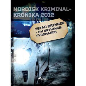 -  Diverse Ystad brinner  -  om Gryningspyromanen (E-bog)