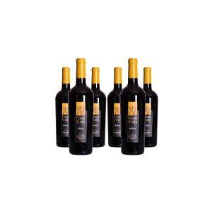CS-VIN Biker Zinfandel Paso Robles 2013, Four Vines - (6 flasker)
