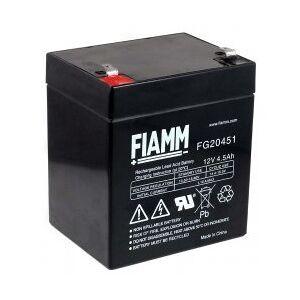 FIAMM Standard-Typ FIAMM Bly-Batteri, erstatningsbatteri kompatibel med COMPAQ R5500XR HPC-R5500XR AGM Nødstrøm UPS
