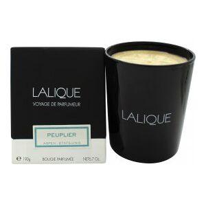 Lalique Candle 190g - Peuplier Aspen