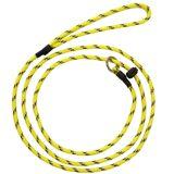 Rexa Dog Leash With Reflextors Gul Gul OneSize