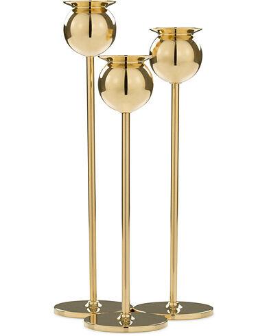 Skultuna The Tulip Candlestick Brass Set of Three men One size Guld