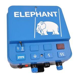 Elephant El-hegn Accu A30