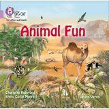 Charlotte Raby Animal Fun Big Book