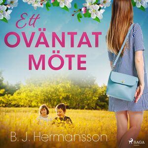 B. J. Hermansson Ett oväntat möte