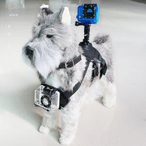 Dog Mount - Rem Til Hund Med Holder Til Gopro Og Sportskamera - Sort