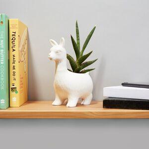 Lloyd The Llama - Porcelæn Krukke - Lama