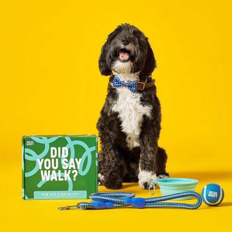 Dog Starter Kit - Hundesnor, Madskål, Bold Og Butterfly