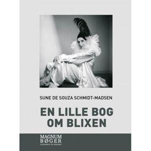 Sune de Souza Schmidt-Madsen En lille bog om Blixen (storskrift)