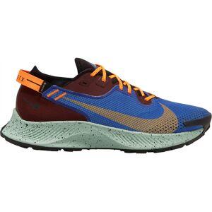 Nike Pegasus Trail 2 Gore-Tex Hombre Zapatillas Running 44