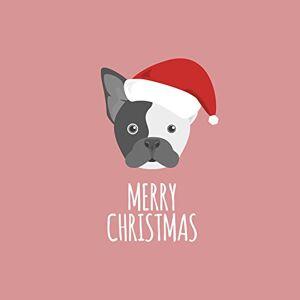 Magnet & Steel Imán y tarjeta de Navidad de acero 8329 ilustrado Boston Santa