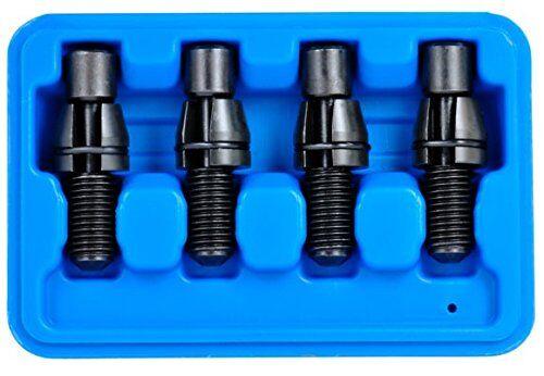 SW-Stahl 26504L - Kit de pernos de ajuste para fijación de bastidor de coche (4 piezas)