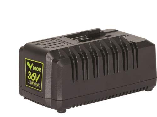 vigor vx 36 - cargador de batería, color negro