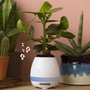 Plant Pot Speaker