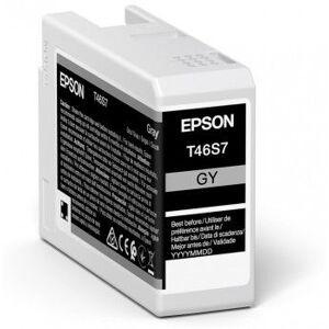 Epson Singlepack Gray T46S7 UltraChrome Pro 10
