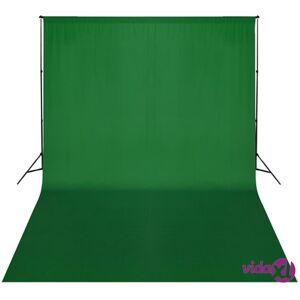 vidaXL Taustakankaan tukijärjestelmä 300x300 cm vihreä