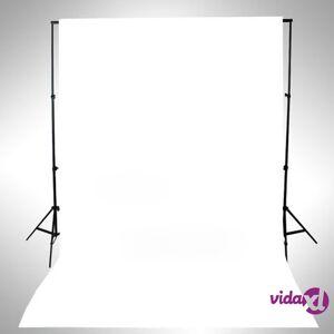 vidaXL Taustakangas puuvilla 500x300 cm valkoinen