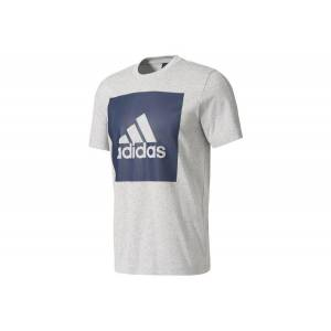 Adidas Miesten t-paita Adidas Essentials Big Box Logo Tee M S98725