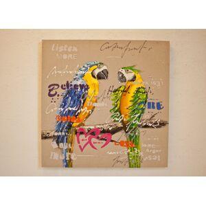 Öljymaalaus Papukaijat 80x80 cm