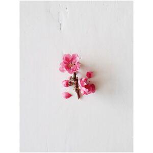 Aveda Après-Shampooing Adoucissant Arôme Floral Doux Cherry Almond Aveda 200ml