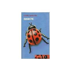 Insecte - Claire Castillon - Livre