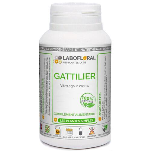 PHYTAFLOR Gattilier Phytaflor - . : 50 gélules