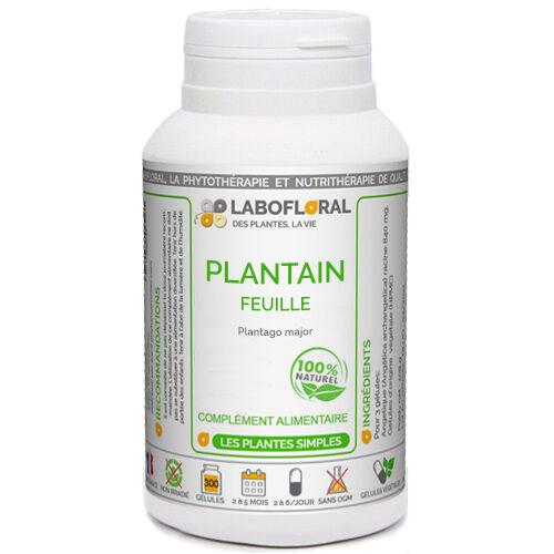 PHYTAFLOR Plantain Phytaflor - . : 50 gélules
