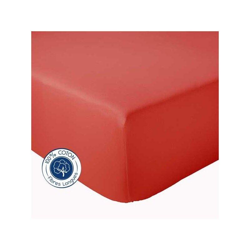 Drap Housse 100% coton Tradilinge  Corail (Couleur : CORAIL, Dimension : 120X190cm)
