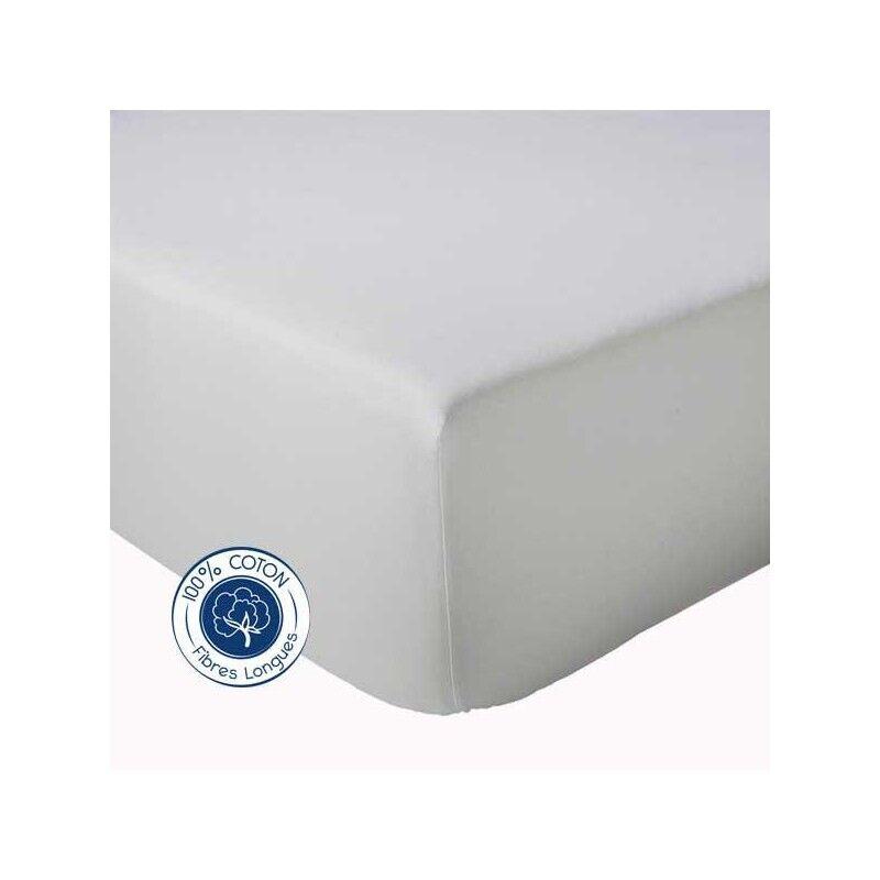 Drap Housse 100% coton Tradilinge  Galet (Couleur : GALET, Dimension : 120X190cm)