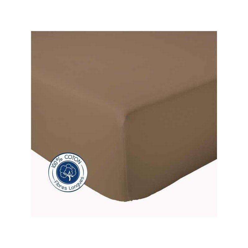 Drap Housse 100% coton Tradilinge Taupe (Couleur : TAUPE, Dimension : 120X190cm)