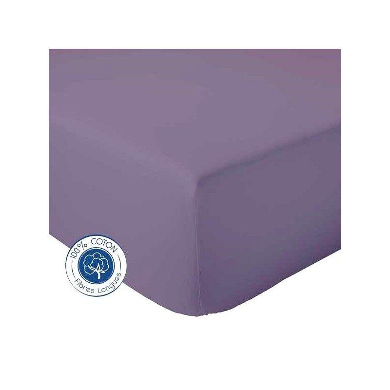 Drap Housse 100% coton Tradilinge  Figue (Couleur : FIGUE, Dimension : 120X190cm)
