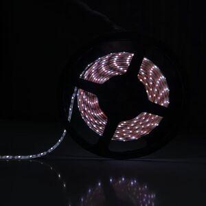 SILAMP Ruban LED 12V 5M 2835 IP44 60LED/m - Blanc Froid 6000K - 8000K - Publicité