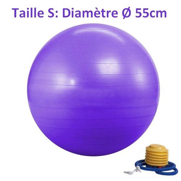 LA PLACE Ballon de Yoga/Fitness Violet Taille S 55CM