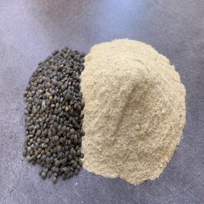 Tairanga Nutrition Farine de lentilles vertes bio
