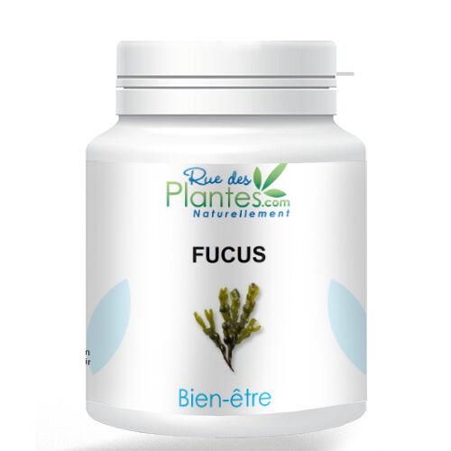 Rue Des Plantes Fucus poudre 100g - Coupe-faim naturel