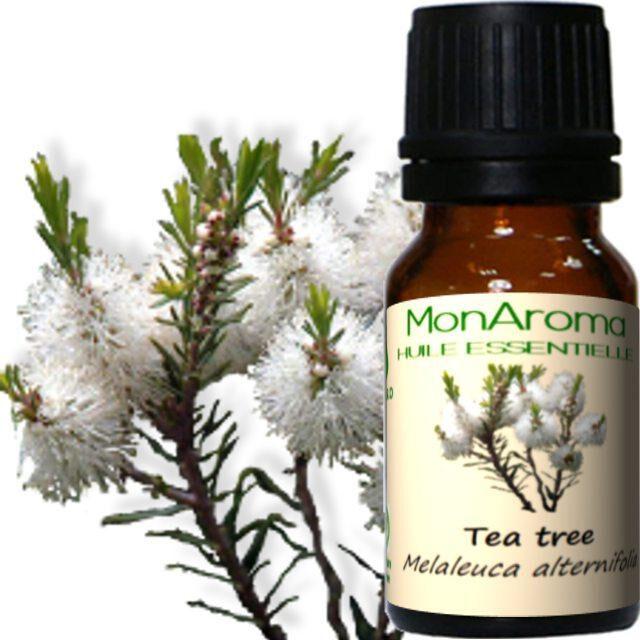 Monaroma Huile essentielle de Tea Tree 10ml