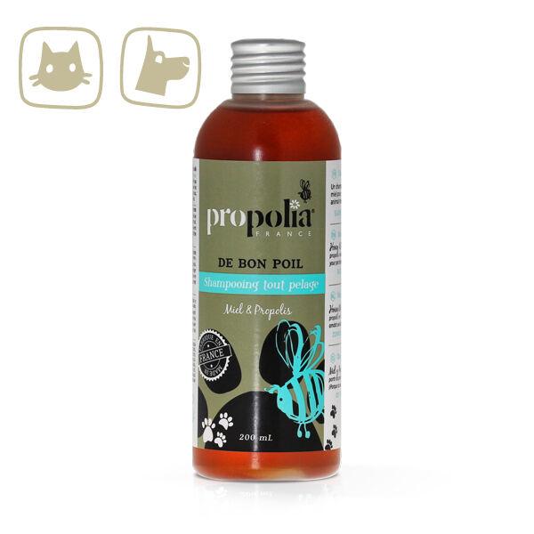 Propolia France Shampoing tout pelage Miel & Propolis