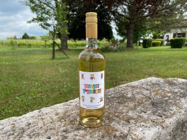 Vignobles Fabien Castaing Jus de Raisin Blanc 100% Naturel Douceur d'Automne - 75cl