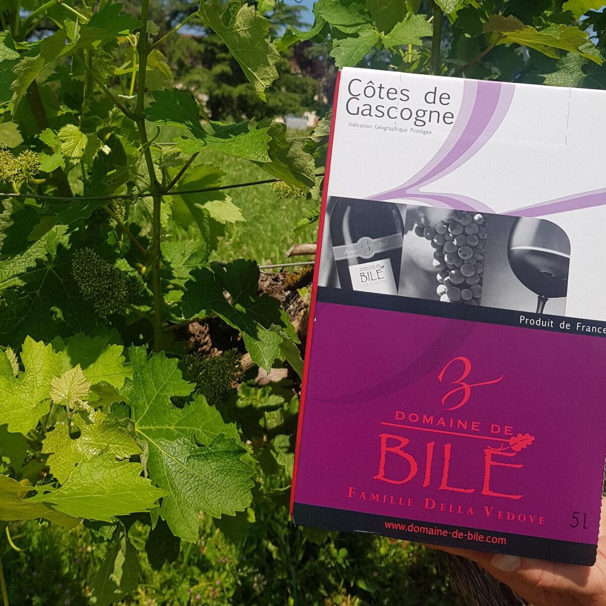 Domaine de Bilé Fontaine à Vin BIB Rouge Non Boisé IGP Cotes de Gascogne 5 Litres