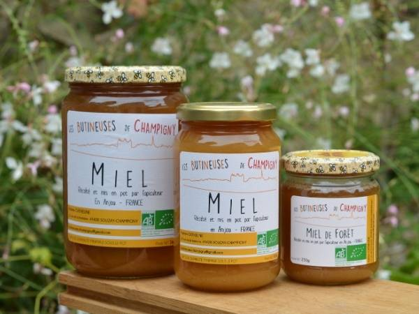Les Butineuses de Champigny Miel de Forêt Bio - 500 g
