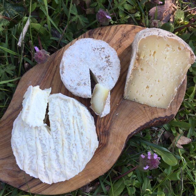 Ferme Fromagère Riès Plateau De 3 Fromages Fermiers De Brebis