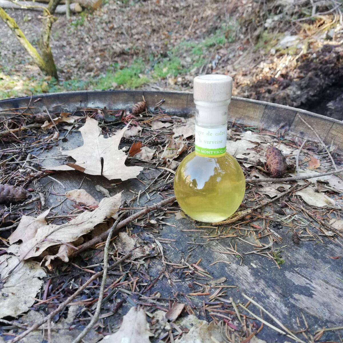 Vinaigres de la Carrière Vinaigre de Cidre à la Verveine bio - 100 ml