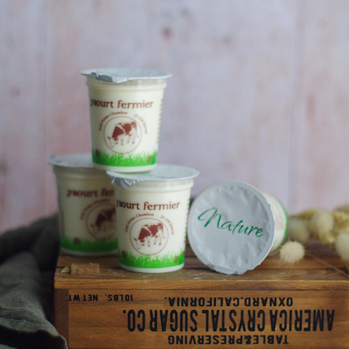Ferme Chambon Yaourts au Lait Cru de Vache Natures x4