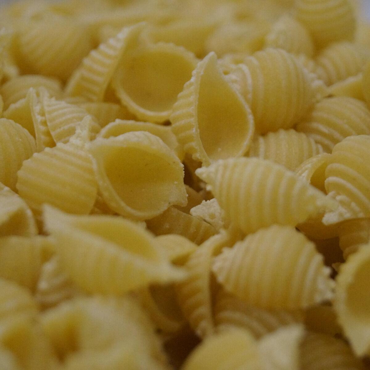 Lioravi, l'authentique pâte fraîche ! Colis de Pâtes Bio Conchiglie 3x250g