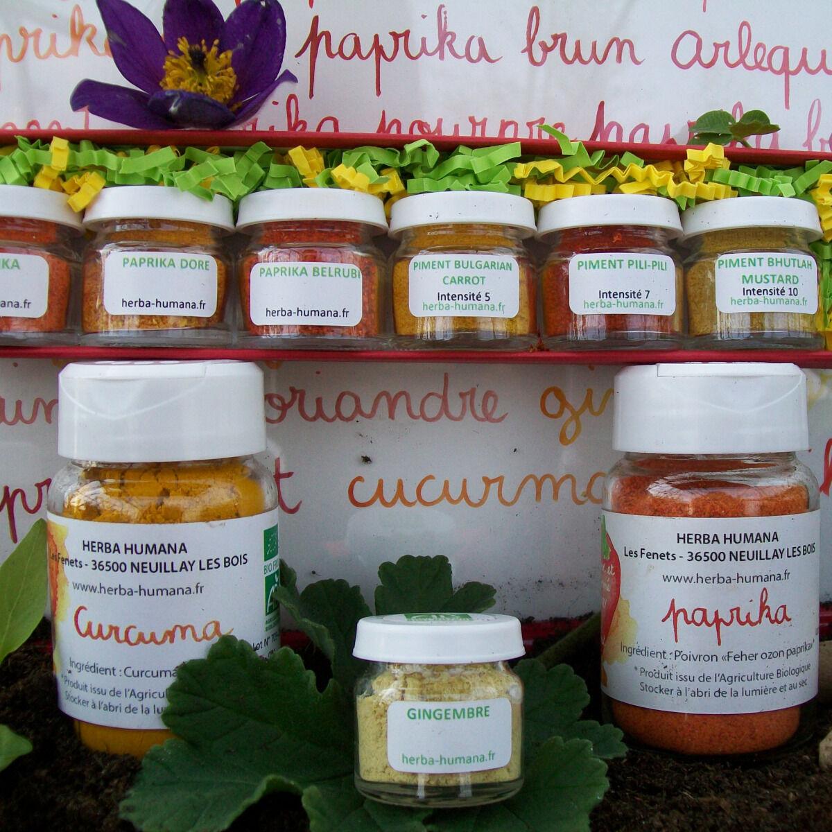 HERBA HUMANA Coffret D'épices Bio Cultivées En France + 3 Flacons Paprika, Curcuma, Gingembre