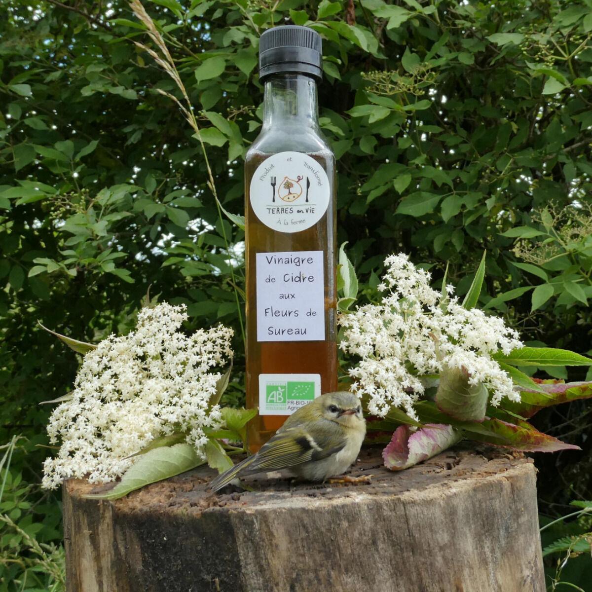 Terres En Vie Vinaigre De Cidre Bio Aux Fleurs De Sureau