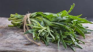 La Boite à Herbes Estragon Français Bio - 100g