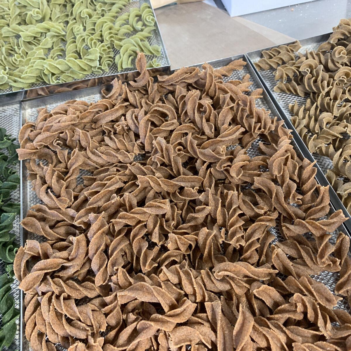 Païs'an Ville® Lot découverte Pâtes Artisanales Bio Tire-bouchon à la farine de Légumineuses 4x250g
