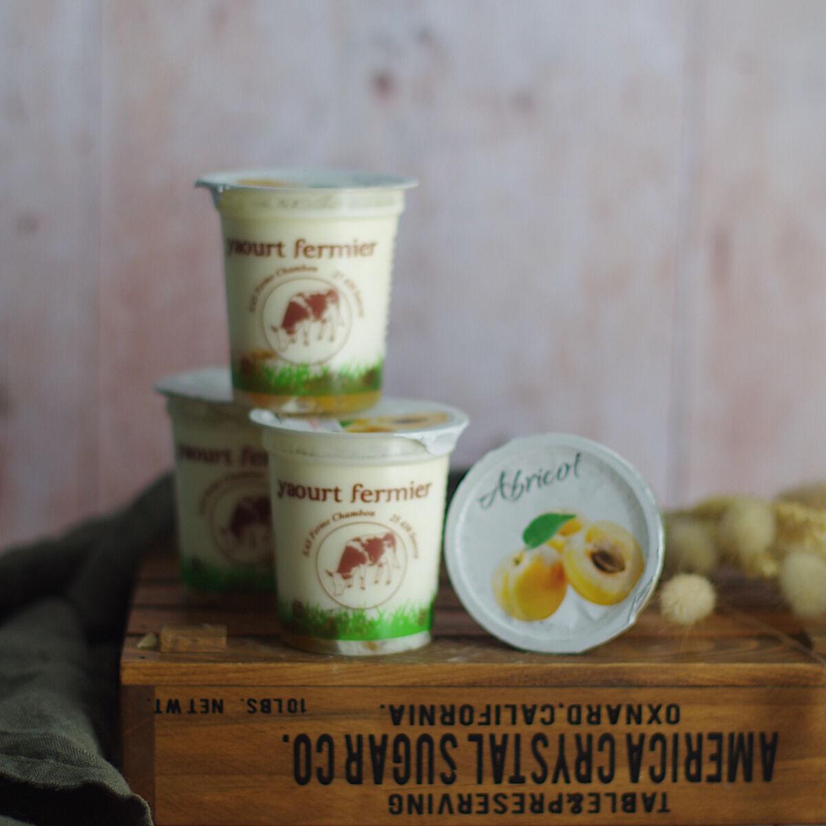 Ferme Chambon Yaourts au Lait Cru de Vache et aux Fruits (Abricots) x4